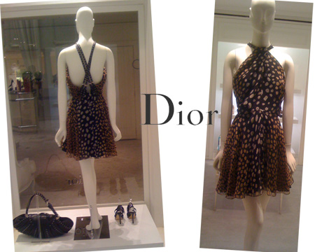 GLAM-4YOU- WHO WORE IT BETTER - DIOR DRESS