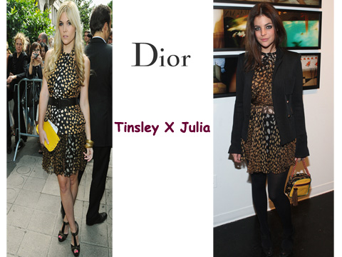 GLAM4YOU- WHO WORE IT BETTER - DIOR- JULIA ROITFELD - TINSLEY MORTIMER